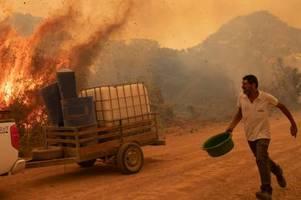 Waldbrände in Brasilien: Menschen leiden, die Agrarindustrie profitiert