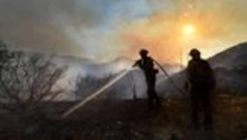 waldbrände: richtige politik senkt das risiko der verwüstung