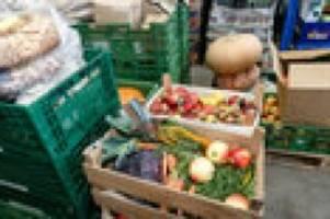 Hamburg: Kreuzfahrtschiffe dürfen Lebensmittel an die Tafel spenden