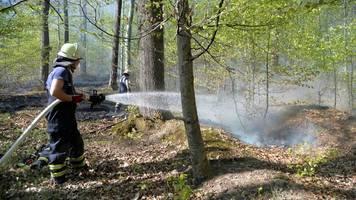 Baden-Württemberg bereitet sich auf Waldbrände vor