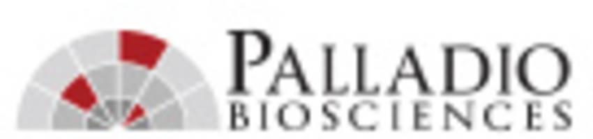 palladio schließt series-b-finanzierung mit 20 millionen usd ab