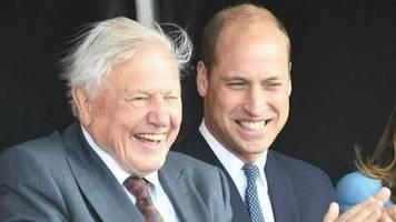 prinz william und sir david attenborough: royal und tierfilmer kündigen projekt an