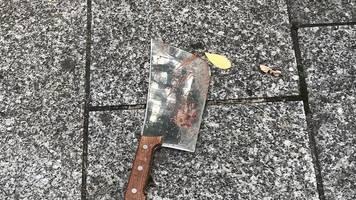 wohl politisches motiv: verdächtiger gesteht blutigen messerangriff in paris