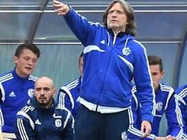 Rangnick, Baum oder Wilmots?: Nur bei Elgert hat Schalke schon Klarheit