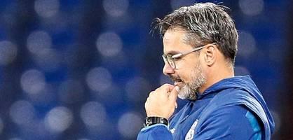Schalke entlässt Trainer David Wagner