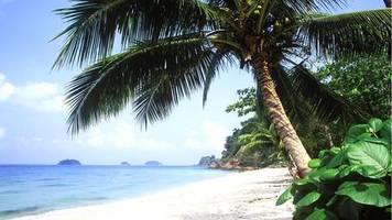 thailand: negative hotel-bewertung bei tripadvisor: us-amerikaner drohen zwei jahre haft
