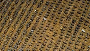 Eine Million Covid-19-Tote: Gigantische Ausmaße: Drohnenvideo zeigt Riesen-Friedhof für Corona-Tote in Brasilien