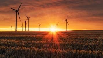 Anlagestrategie: OECD – Mangelnde Vergleichbarkeit bremst nachhaltige Kapitalanlagen