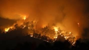 erneut tote durch brände in kalifornien