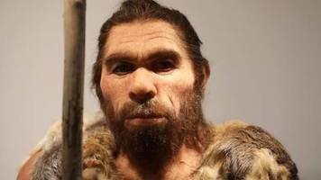 Studie: Neandertaler-Gene erhöhen Risiko für schweren Corona-Verlauf