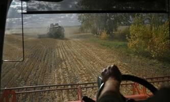 was haben die russland-sanktionen gebracht?