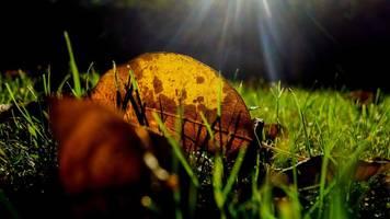 Wechselhaftes Wetter in Rheinland-Pfalz und im Saarland erwartet