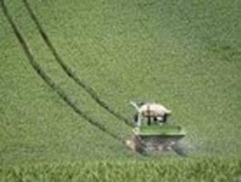 Wie die EU-Agrarreform zu mehr Biolandbau führen soll