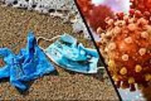 Superenzyme könnten helfen - Plastik-Berg schwillt an: Corona befeuert weitere Pandemie, die schon lange schwelt
