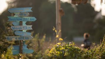 newsletter recht & steuern: finanziell abgesichert ins sabbatical starten