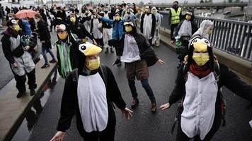 protestaktion mit pinguinen zur ber-eröffnung