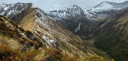 """Exkremente am Straßenrand – Neuseeland kämpft gegen """"Freiheits-Camper"""""""
