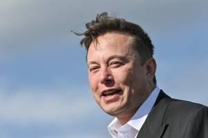 Tesla-Chef Elon Musk hat in nur einer Woche mehrere Milliarden verdient