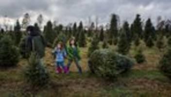 Corona-Regeln über Weihnachten: Länder einigen sich auf Corona-Regeln für die Feiertage