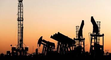 Insidern zufolge: Opec neigt weiter zur Verlängerung der Förderbremse