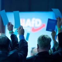 600 Delegierte in Kalkar: Könnte ein Hotspot werden  – AfD plant Bundesparteitag in Corona-Zeiten