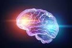 alzheimer, Übergewicht, depression - volkskrankheiten vorbeugen: multitalent insulin steuert auch vorgänge im gehirn