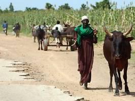 Boko-Haram-Terror in Nigeria: Islamisten richten 43 Bauer hin