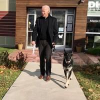 Die Morgenlage: Amtseinführung im Stützschuh? Joe Biden verletzt sich beim Spielen mit seinem Hund