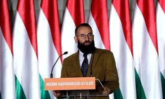 ungarischer eu-abgeordneter stolpert über sex-party in brüssel