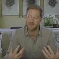 Corona-Pandemie: Mutter Natur bestraft uns für schlechtes Verhalten – Prinz Harry sieht Corona als Mahnung