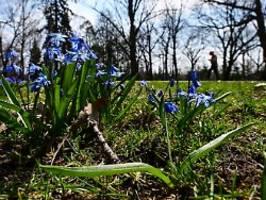 Die Wetterwoche im Schnellcheck: Frühlingshoch in Sichtweite