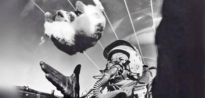 ein bild und seine geschichte: die katze im kampfjet