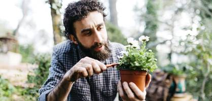 in zehn schritten zum entspannten gärtnern