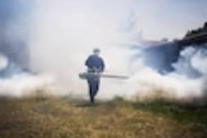 Auch Enkelinnen bedroht - DDT wirkt über Generationen: Pestizid erhöht selbst bei Töchtern das Brustkrebsrisiko