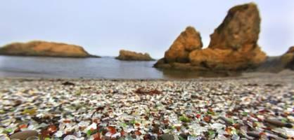 Die Juwelen der Meere werden seltener