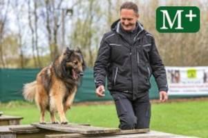 Verhaltenstherapie: Sitz, Platz und Aus! Hundeschulen boomen in Berlin