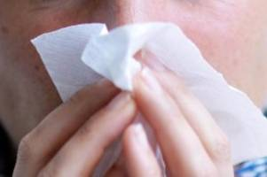 Krankheiten: Besonders schwache Grippe-Saison geht dem Ende entgegen