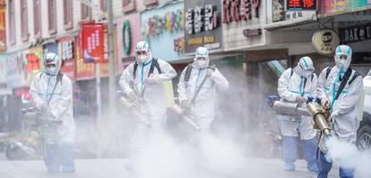 Corona und globale Strategien: »Wir werden mit diesem Virus leben müssen«
