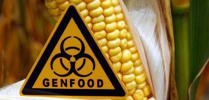 Crispr/Cas9: Warum neue Gentechnikverfahren in der Landwirtschaft eine Chance verdienen