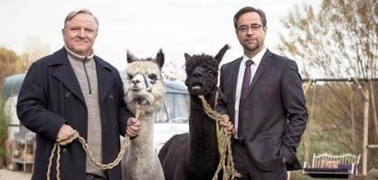 """Münster-""""Tatort"""" mit Liefers und Prahl erreicht mehr als 14 Millionen Zuschauer"""