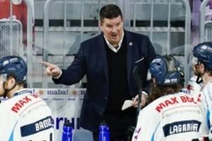 DEL: Straubing Tigers verlängern mit Trainer Pokel