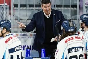 Straubing Tigers verlängern mit Trainer Pokel