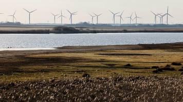 grüne geldanlage: bund beschließt strategie für nachhaltige finanzwirtschaft