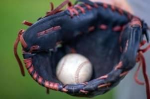 Baseball: Hamburg Stealers: Playoff-Teilnahme ist das Ziel