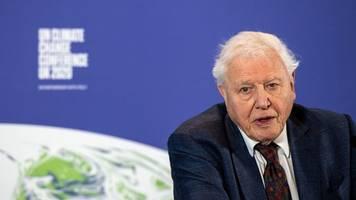 Dokumentarfilmer: Ein Leben für den Planeten - David Attenborough wird 95