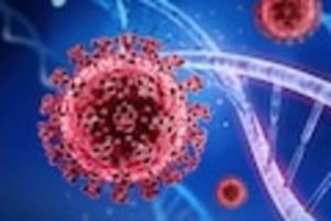 neue ergebnisse - pcr-test noch nach monaten positiv: corona schleust virus-schnipsel in unsere dna
