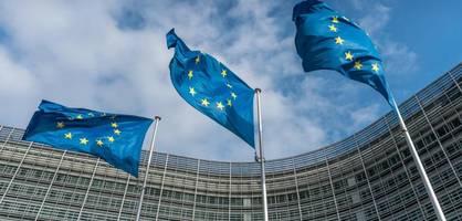 Der Mini-Währungsfonds ESM wird in der Pandemie zum Ladenhüter