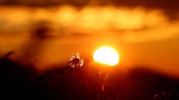 Strahlender Sonnenschein am Muttertag in Bayern