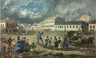 Wilde, alte Donau: Spektakuläre Bilder in der Nationalbibliothek [premium]