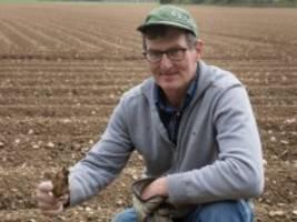 Landwirtschaft: Corona-Krise trifft Kartoffelbauern hart
